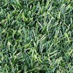 Field of Dreams Jade Grass Carpet Rolls